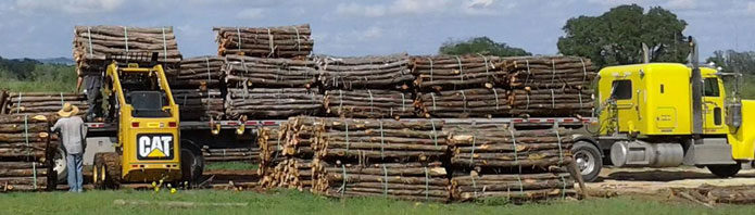 "18 wheeler load of cedar posts heading south - 7' x 4"" wire posts"