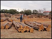 Need large cedar posts for your projects - Haynes Cedar Yard has them!